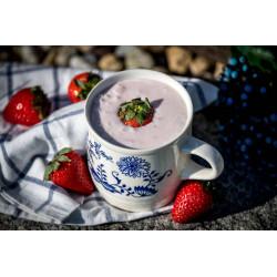 BIO Jogurtové mléko jahoda 450g